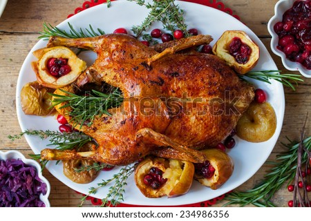 Festive roast duck with apples and cranberries - stock photo
