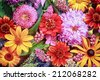Festive vibrant floral background with a large arrangement of colorful summer flowers in rainbow colors including dahlias and gerbera daisies for celebrating a special occasion or holiday - stock photo