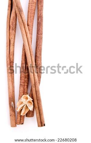 Few cinnamon sticks with a dry flower - stock photo