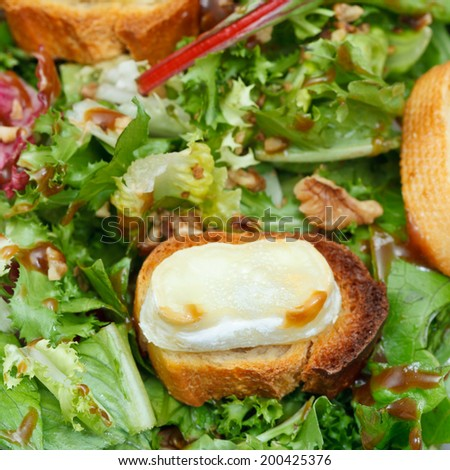 few toasted breads with goat cheese on green lettuche with dressing close up - stock photo