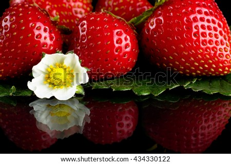 Few whole strawberries isolated with leaves on black background - stock photo