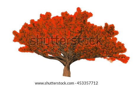 Ficus Microcarpa Tree Isolated on white background, 3D Illustration.