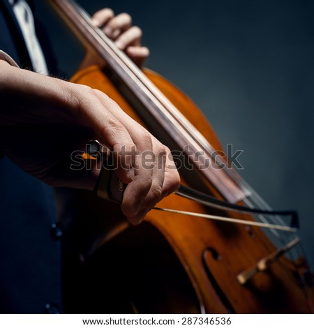 fiddlestick in hand cellist - stock photo
