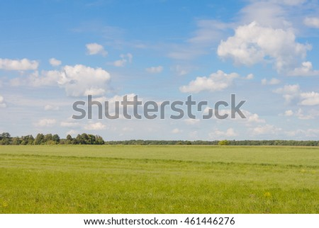 Field against the sky with clouds and forests