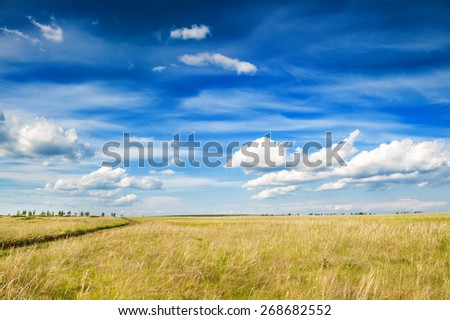 Field and blue sky with clouds. Beautiful summer landscape - stock photo