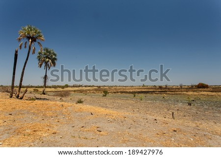Field at Katima Mulilo - Small Town in North Eastern Namibia, Africa