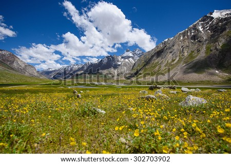 field in moutains with clouds in blue sky