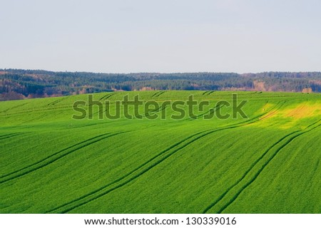 field in spring - stock photo