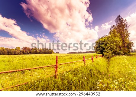 Field in the forest enclosed by a wooden fence on a background of the cloudy sky. Image in the orange-purple toning - stock photo