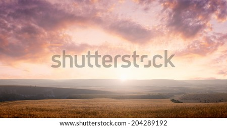 Field landscape on a beautiful sunset sky background - stock photo