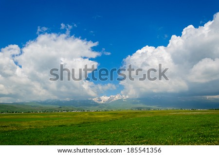 Field landscape with cumulus clouds - stock photo