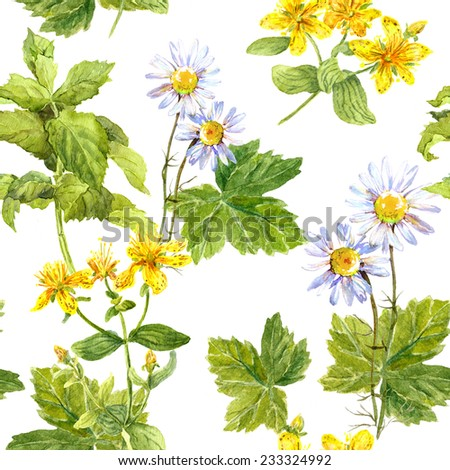 Field of flowers, meadow of herb: chamomile, hypericum, mint. Herbal seamless repeated floral pattern. Watercolour - stock photo