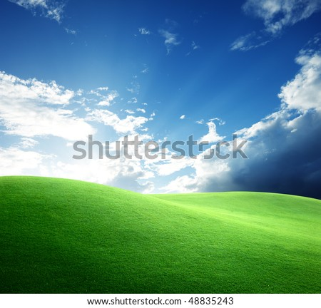 field of grass and sunset - stock photo
