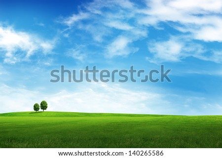 Field of grass, tree and blue sky - stock photo