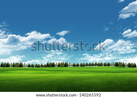 Field of grass, tree, and blue sky - stock photo
