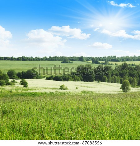 Field of grass,trees and blue sky with sun. - stock photo