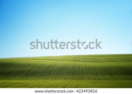 field of green grass and clean blue sky. natural summer background - stock photo