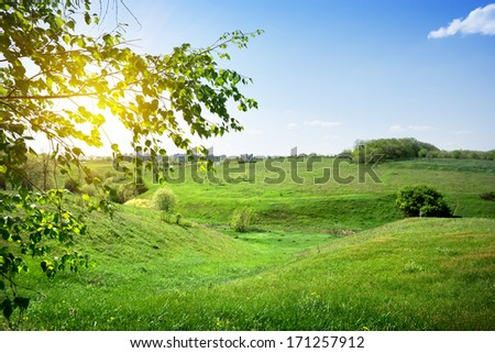 Field of green grass at sunset near a city - stock photo