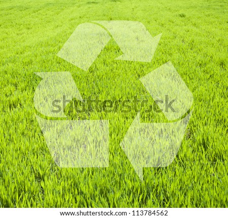 Field of green wheat grass with recylce sign - stock photo