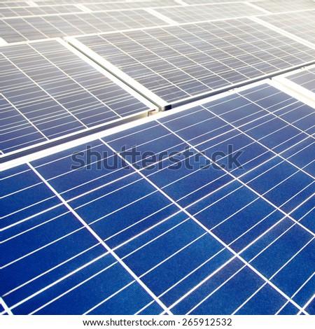 Field of solar panels - stock photo