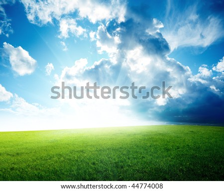 field of spring grass and perfect sky - stock photo