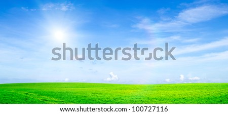 field on a background of the blue sky - stock photo