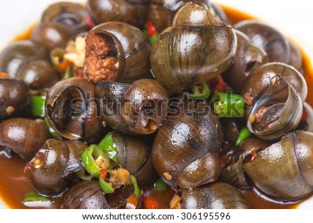 field snail stir fried with chili sauce, a popular chinese dish - stock photo
