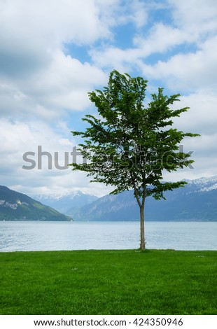 Field,tree, lake and clouds sky soft focus background - stock photo