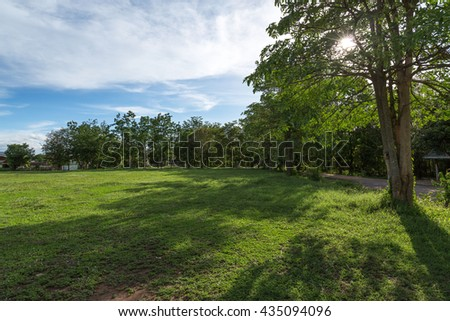 field, trees and blue sky - stock photo