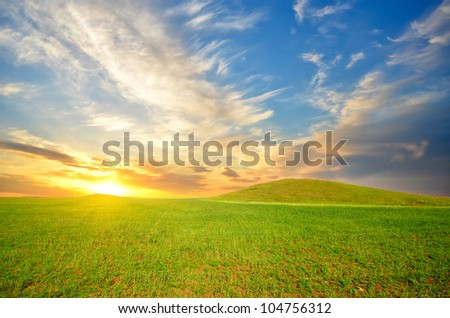 field with green grass and red poppies against the sunset sky - stock photo