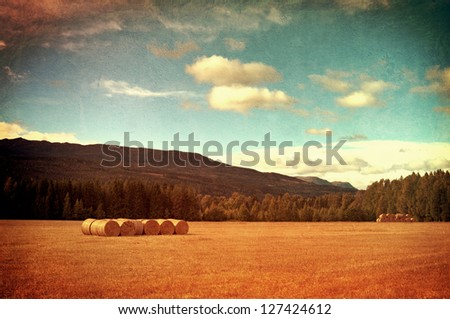 Field with hay bales. Photo processed in vintage style. - stock photo