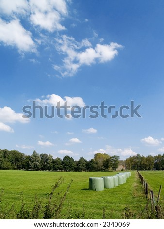 field with hay stacks on a sunny summer day, blue sky with clouds, farm in background. Agriculture concept. - stock photo
