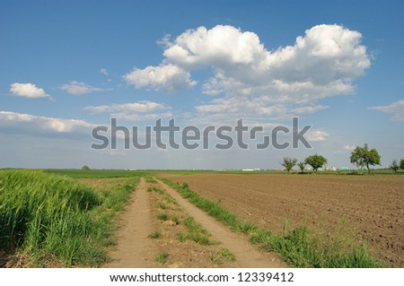 Field with road over blue sky and clouds in spring - stock photo