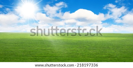 field with sky on summer day