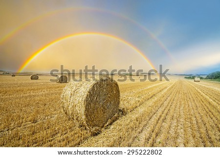 fields after harvest with rainbow - stock photo