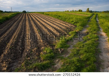 Fields and meadows landscape - stock photo