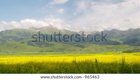 Fields at the base of Terskey Alatau Mt Range South of Issyk Kul lake Kyrgyzstan - stock photo