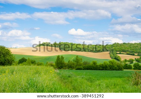 Fields in south of France