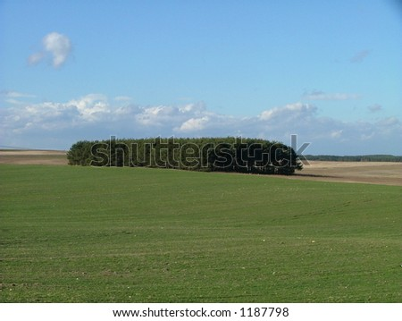 fields in springtime - stock photo
