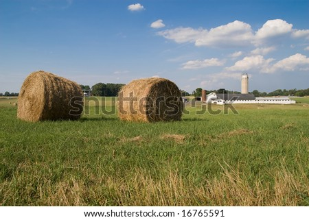 fields of hay - stock photo