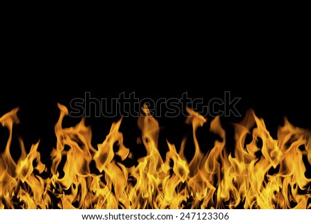 Fierce and beautiful flames on black background. - stock photo