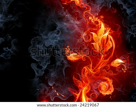 Fiery flower - stock photo