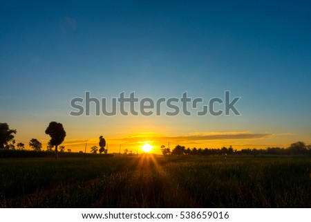 Fiery orange sunset sky. Beautiful sky.sunset in Thailand.Sunbeam morning onion farm.