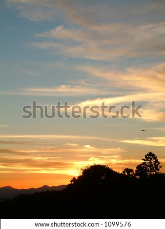 fiery sunset behind silhouetted trees - stock photo