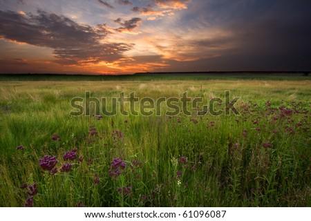 Fiery Sunset over swampy land - stock photo