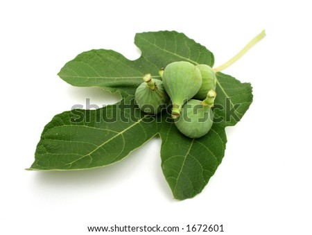 Fig fruits and leaf on white background - stock photo