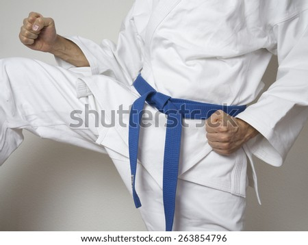 fighter with blue belt martial arts kick - stock photo