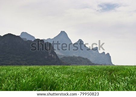 Filed and Rock Mountain - stock photo