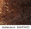 Filled honeycomb - stock photo