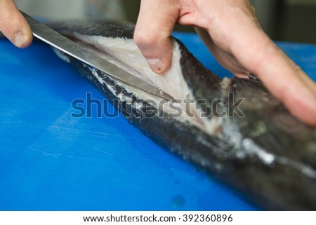 Filleting and removing the bone from a fresh fish on a blue cutting board using a sharp knife. - stock photo